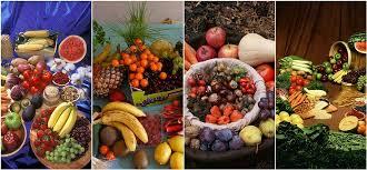 1.000+ kostenlose Gemüse & Lebensmittel Illustrationen - Pixabay