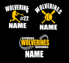 Wolverines Car Decal I Shine By Design