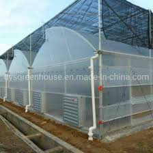 china single tunnel greenhouse with