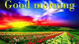 good morning wishes on tuesday images
