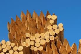 Wood Wooden Posts Stack Pointed Peg Fence Wood Fence Post Wood Material Large Group Of Objects Nature Pxfuel