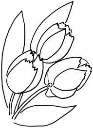 Tulpen Bloem Kleurplaat Gratis Kleurplaten Printen