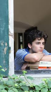 call me by your name timothee chalamet