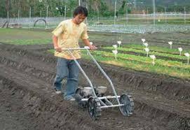 manual vegetable seeder