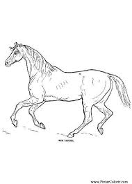 Mustang Horse Coloring Pages Resume Simple Templates