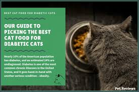 11 best cat foods lower carb for