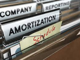 The relevance of Amortization Process