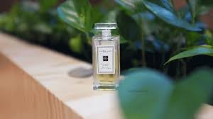 jo malone body oil review sophia s