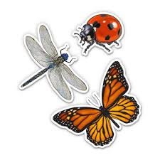Monarch Butterfly Ladybug And Dragonfly Set 5 Each Vinyl Stickers For Car Laptop I Pad Waterproof Decals Walmart Com Walmart Com