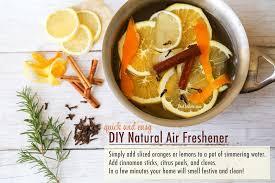 diy natural air freshener rachel hollis