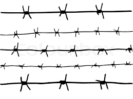 Vector Drawing Of The Barbed Wire Stock Vector Colourbox