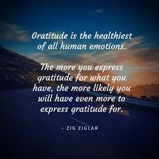 quotes to help you experience more gratitude