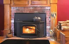 wood burning fireplace insert daily