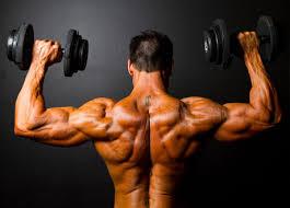 shoulder workout plan lateral flys