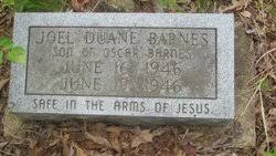 Joel Duane Barnes (1946-1946) - Find A Grave Memorial