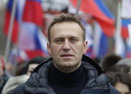 Russia's Navalny in coma, allegedly poisoned by toxic tea