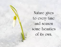 inspirational quote on nature a snow drop flower poking
