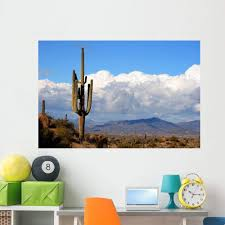 Amazon Com Wallmonkeys High Desert With Cactus Wall Decal Peel And Stick Graphic Wm349868 36 In W X 24 In H Home Kitchen
