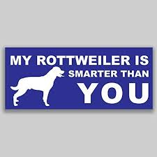 Amazon Com Jb Print Magnet My Rottweiler Is Smarter Than You Dog Mom Animal Vinyl Decal Sticker Car Waterproof Car Decal Magnetic Bumper Sticker 5 Kitchen Dining
