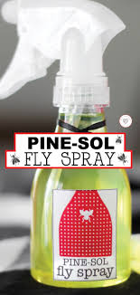 pine sol fly spray for keeping flies away