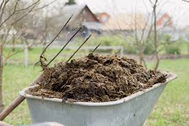 manure as fertilizer how manure