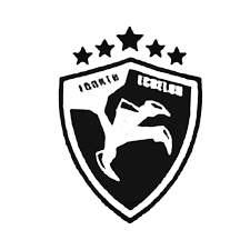 Tom Clancy039s Fourth Echelon Badge Decal Sticker
