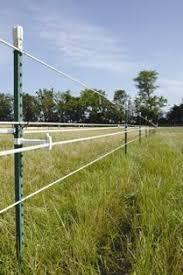 Fencing For Horses Nrcs New Jersey