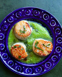 Seared Scallops with Asparagus Sauce ...