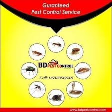 Care Pest Control Services Ltd - Pest Control Service | Facebook - 214  Photos