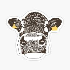 Cow Stickers Redbubble
