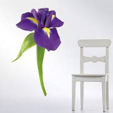 Shop Iris Flower Full Color Wall Decal Sticker An 156 Frst Size30 X47 Free Shipping Today Overstock 20693809