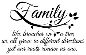 Family Roots Wall Quotes Decal Contemporary Wall Decals By Dana Decals