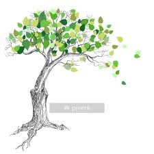 Tree With Green Leaves Wall Decal Pixers We Live To Change