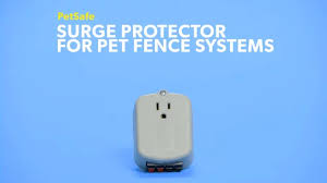 Petsafe Pet Fence System Surge Protector Chewy Com