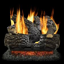 vented natural gas fireplace log set