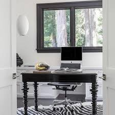 office zebra rug design ideas