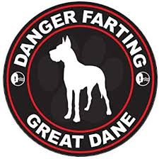 Amazon Com Danger Farting Great Dane Sticker Decal Self Adhesive Vinyl Dog Canine Pet Truck Car Decal Vinyl Bumper Sticker Sticks To Any Surface 5 Kitchen Dining