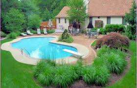 Swimming Pool Landscaping Ideas With Pic Of New Back Yard Area Home Elements And Style On A Budget Inground For Decor Small Backyard Simple Crismatec Com