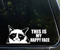 Grumpy Cat Happy Face Funny Vinyl Decal Stickers Sticker Flare Llc