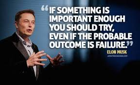 if something is important enough you elon musk quotes news