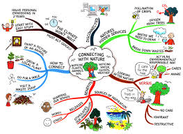 Nature Connections @ Mind Map Art