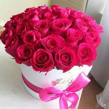 ورود جميلة اجمل صور الورود فى العالم عيون الرومانسية