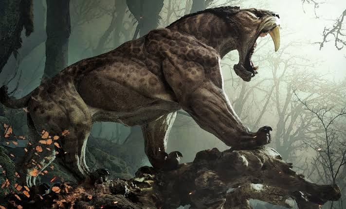 Image result for smilodon""