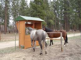 Install Automatic Horse Feeder In Fence Line