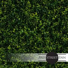 3rd Street Inn Artificial Hedge Outdoor Artificial Plant Great Boxwood And Ivy Substitute Sound Diffuser Privacy Fence Hedge Topiary Greenery Panels 12 Golden Boxwood Walmart Com Walmart Com