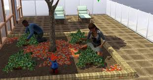 rooftop or balcony garden in the sims 3
