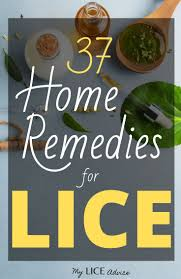 37 home remes for lice find out