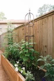Kitchen Garden Vs Vegetable Garden Gardenary