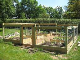 Home Gardening Design Ideas With Beautiful Raised Bed Gardening With Fence And G Garden Layout Vegetable Vegetable Garden Raised Beds Vegetable Garden Planning