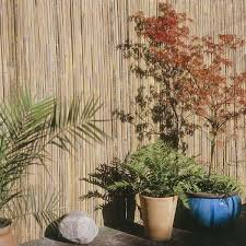 Bamboo Garden Screening Fencing Fast Delivery In Ireland
